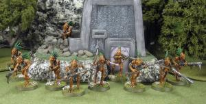 Grey army Kroot