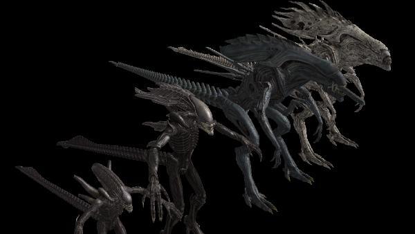 Alien Vs Predator Miniatures Game Prodos Loses License To